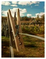 Clothes Pin by Burn-Your-Life-Down