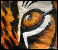 Tiger's Eye by Roshila
