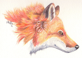 Mista Fox. First watercolour by Ithfifi