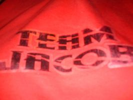 Team Jacob T-shirt by MtotheAtotheRIAH