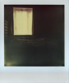 Trying out polaroids 1 by tilsley