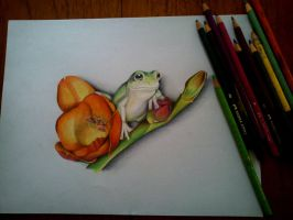 color frog by flak2013
