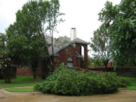 Storm Damage 1 by toenolla