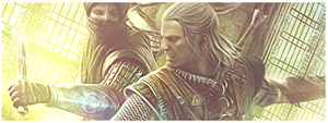 The Witcher 2 Signature by Hura134