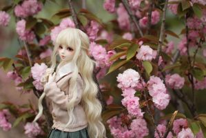 born in spring by Angell-studio