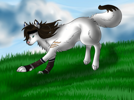 Aika Trade by VictoriWind