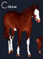 Cordae as a Yearling by Geronimo24