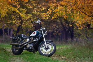 Honda VT 1100 SC23 Shadow 01 by Deformity