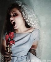 Shotgun Bride by sinistra