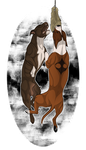 Double up on pit bulls by PittMixx
