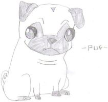 Pug by TommEdge4Life