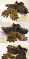 Anteater Paws 1 by AcrotomicStudios