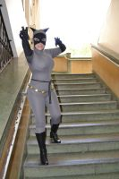 Batman animated series 's catwoman cosplay by Carollinae