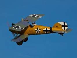 Albatros Old Warden by davepphotographer