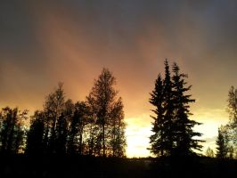 Evening sky in Wasilla, Alaska by ObliviousMind
