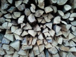 Cutted Wood Pile by Fea-Fanuilos-Stock