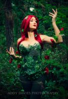 Poison Ivy by Addy-Davies
