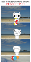 WENT TO THE BEACH DURING WINTER AND REGRETTED IT! by Beefpaper