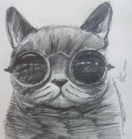 manditory daily cat sketch 585 by nosoart