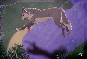 Exploring in the moonlight by Ristyana