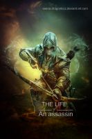 The life of an Assassin by xeena-dragonkizz