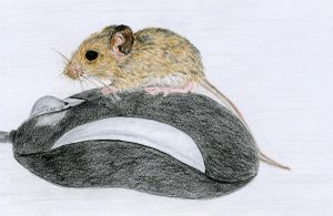 Mouse on mouse by Cwylldren