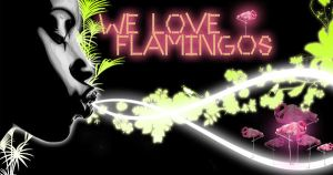 we love flamingos by BenTara