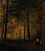 a peaceful autumn evening by KariLiimatainen