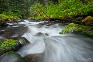 Sol Duc Valley by LukeAustin