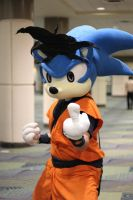 Soniku is sick of your shit by SonicTheCosplayer