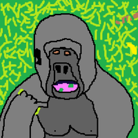 This is a Gorilla by gms1223
