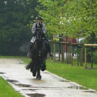 baroque rider in the rain by Nexu4