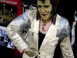 Elvis by makepictures