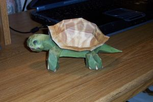 Papercraft Turtle by CalleStar