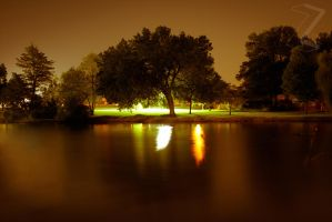 The Tree Across the Pond 2 by ZeeZedZee