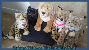 Unitoy Wildcat Plush Collection!! by Vesperwolfy87