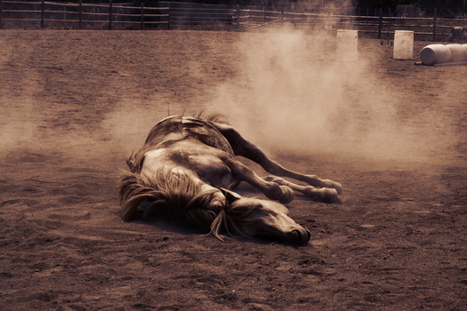 Lay down to dream by FadingPhotography
