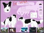 ADOPT WINDHOUND auction - CLOSED by Do-El