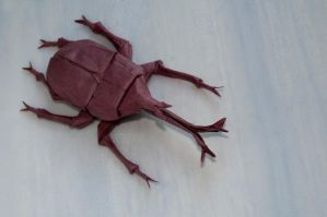 Samurai Helmet Beetle Type 2 by Dreams-Made-Flesh