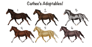 Point Adoptables! CLOSED by catheetiem
