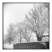 2014-344 Early snow by pearwood