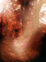 Fairy Forest - Red Version by Akissi
