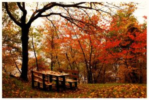 Autumn Park by wonderlandadventures
