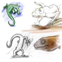 Lizards by Hazneliel