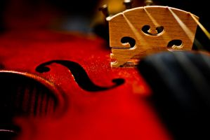 Grandfathers Violin by JimBarryPhotography