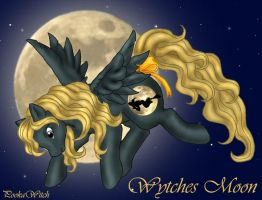 Wytches Moon, Pony by PookaWitch