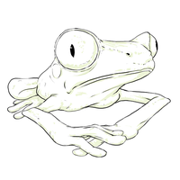 Frog of Surprise by bensigas