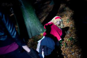 Hetalia: in the dark forest by Mangestu001