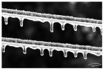 Icy Line by Photo-Cap