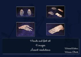 hands and feet set by Wicasa-stock